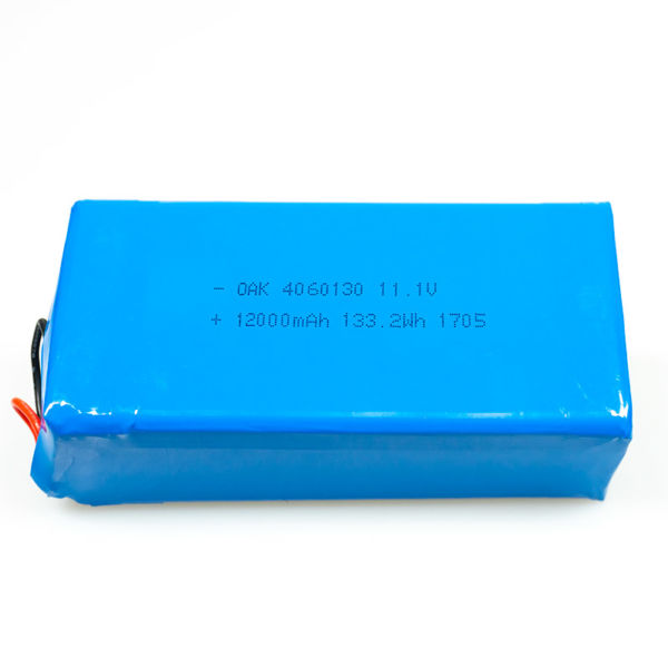 Lithium Shuttle Battery_1