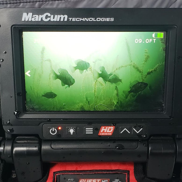 MarCum Quest Underwater Camera Recording